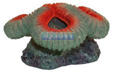 Enfeite de Resina Soma Coral Red Brain Ac2121