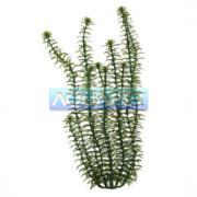 Planta Plastica Anacharis 30cm Tetra