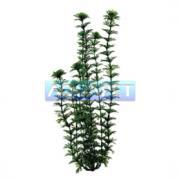 Planta Plastica Ambulia 30cm Tetra