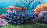 Painel 60x40cm Coral Reef Nmbg8 Penn Plax - Procurando Nemo