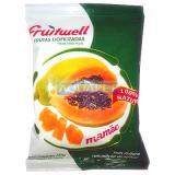 FRUITWELL MAMAO 40G