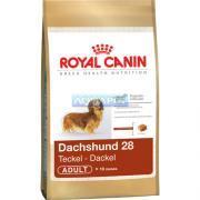 RA��O RA�A DACHSHUND 28 ADULTO 3KG ROYAL CANIN