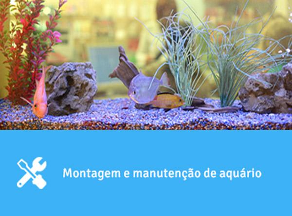 Montagem e manutenção de aquário