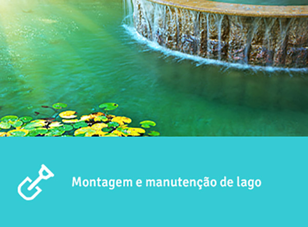 Montagem e manutenção de lago