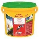 Ração Para Carpas Koi Color Large 1kg Sera - Peixes - Lagos