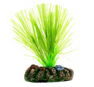 Planta Plastica 13cm Mayaca Sellowiana Green Sp1321 Mydor