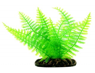 Planta Plastica Samambaia Rendada Green 20cm 2050 Mydor