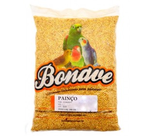 Painco 500gr Bonave