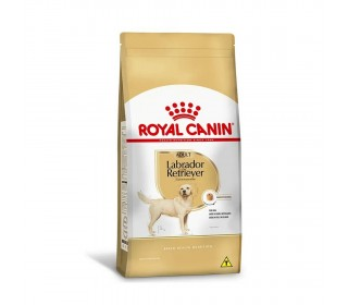 RAÇÃO LABRADOR RETRIEVER  ADULTO 12KG ROYAL CANIN