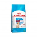 Ração Medium Junior  15 kg - Royal Canin