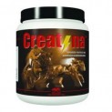 CREATINA 500G VETNIL