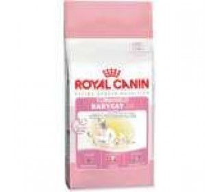 RAÇÃO PARA GATO MOTHER & BABY CAT 7,5KG ROYAL CANIN