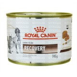 RACAO UMIDA CANINE/FELINE RECOVERY WET 195G ROYAL CANIN