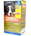 Antipulgas Advocate para Caes 1,0ml(4-10kg)Combo C/3
