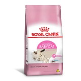 Royal Feline Mother Baby Cat 34 1,5kg Gata Prenha E Filhotes